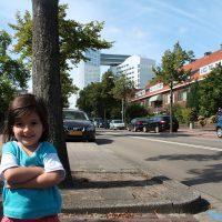 دادگاه لاهه، هلند